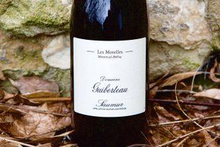 Romain Guiberteau's Saumur Rouge, Les Motelles