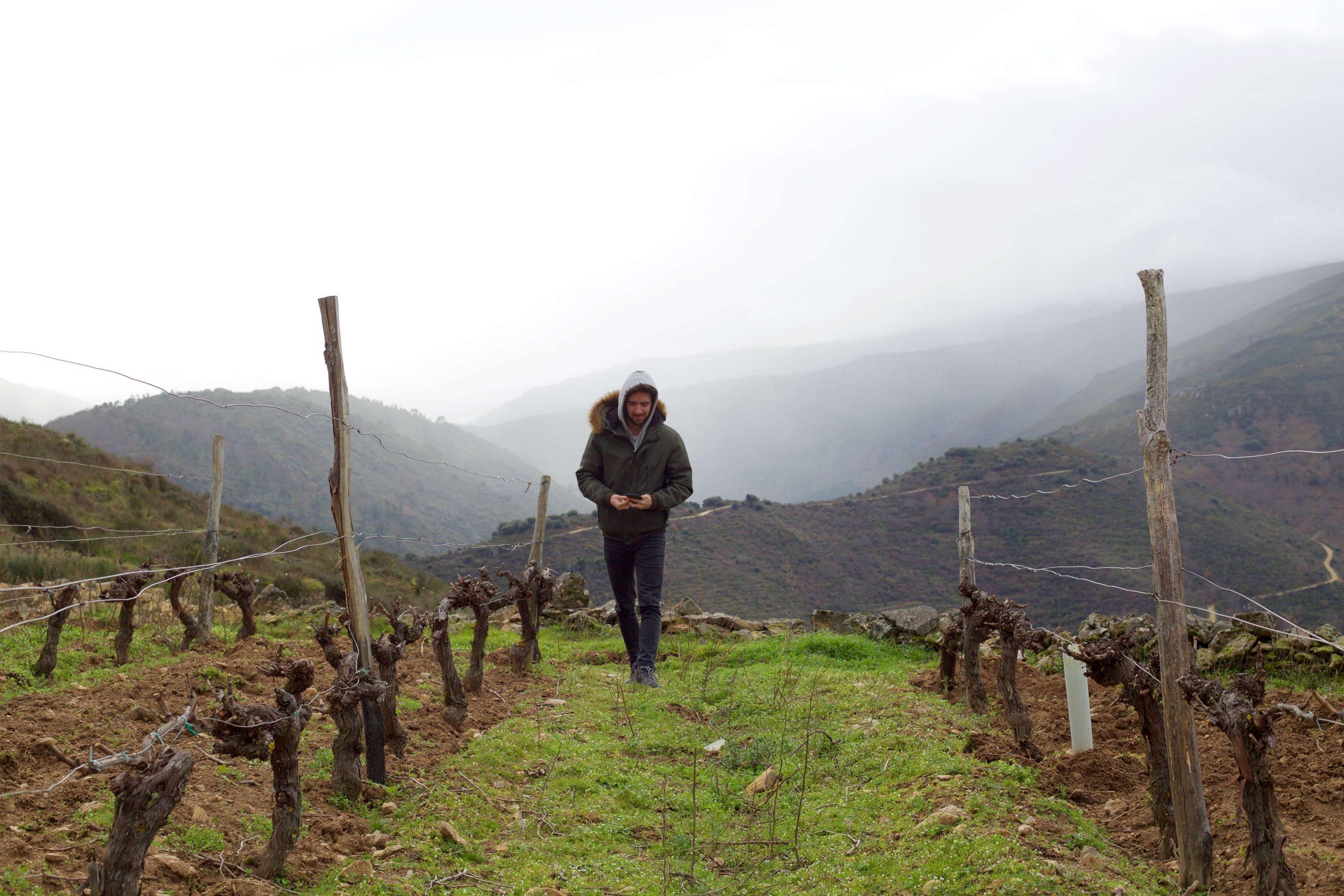MsC Geologist, Ivan Rodrigues, in the Valdeorras D.O.