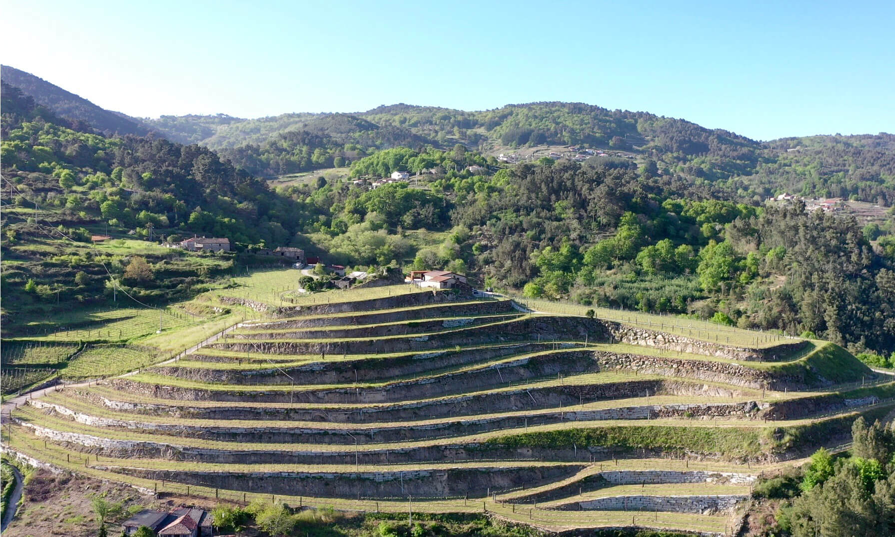 Fazenda Pradio vineyard in Chantada, a colder sub zone of Ribeira Sacra